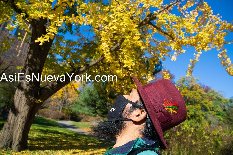 Disfrutando el Otoño en el Parque Central en Manhattan, en la ciudad de Nueva York. Foto por Javier Soriano/AsiEsNuevaYork.com