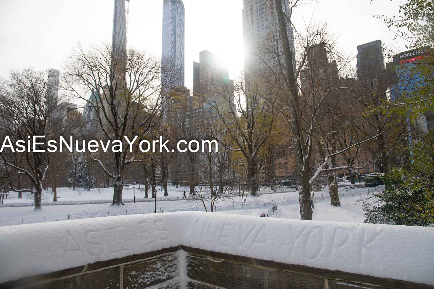 Thursday, December 17, 2020. Manhattan, New York City – Winter storm Gail in Central Park. Photo by Javier Soriano/www.JavierSoriano.com